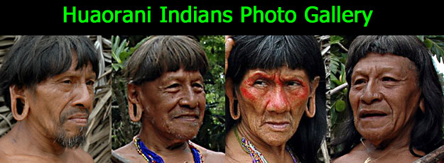 Photographic Gallery | Huaorani Tribe